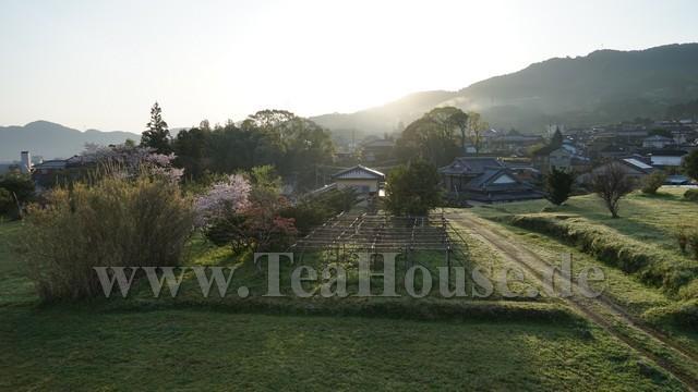 Japan Teereise – Die. 05.04.2016