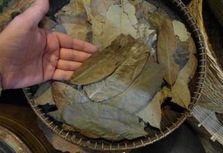 Teereise nach Taiwan - TeaHouse Oolong Tees